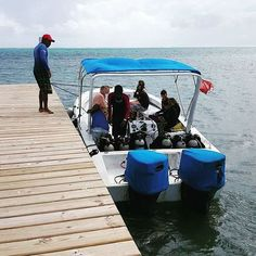 Getting a boat right from our pier to go scuba diving with our onsite scuba school Comfort, convenience, service and fun. That is what we are all about at Royal Caribbean Resort. Caribbean Resort, Royal Caribbean, Luxury Life, Belize, Scuba Diving, Paradise, To Go, Boat, Adventure
