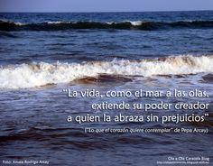 """Colección de frases de Pepa Arcay De """"Lo que el corazón quiere contemplar"""" http://olaaolacaracola.blogspot.com.es/"""