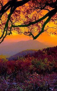♥ Ѽ Autumn ♥ ༻✿ڿڰۣ ♥ NYrockphotogirl ♥༻Beautiful October sunset .Virginia