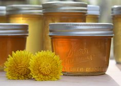 Texas Recipes-Dandelion Jelly! Good for you, tastes slightly floral, sweet and mild. Not at all bitter!