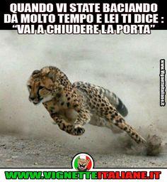 Il momento decisivo (www.VignetteItaliane.it)
