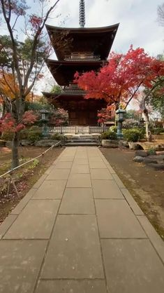 Beautiful Places In Japan, Beautiful Places To Visit, South Korea Photography, Nature Photography, Japan Street, Go To Japan, Aesthetic Japan, Beautiful Nature Scenes, Japan Travel