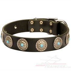 Magnificent #Dog #Leather #Collar $34.90