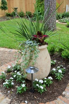 Garden Ideas Houston garden ideas houston tx landscaping: landscaping ideas for front