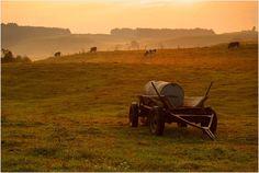 "Podlasie"" Podlaskie climates. Landscape Park at dawn.   © Janusz Kajzer (ghost_dog72)"