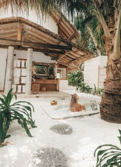 travel and vacation ideas | tulum, mexico