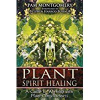 Plant Spirit Healing: A Guide to Working with Plant Consciousness: A hands-on approach to working with the healing powers of plant spirits <BR><BR> Healing Books, Healing Herbs, Wound Healing, Natural Healing, Universal Consciousness, Sacred Plant, Spirituality Books, Medicinal Plants, Herbal Medicine