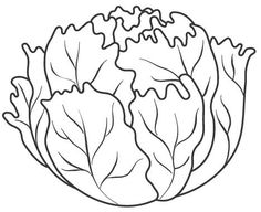radish vegetables coloring pages for kids printable free food