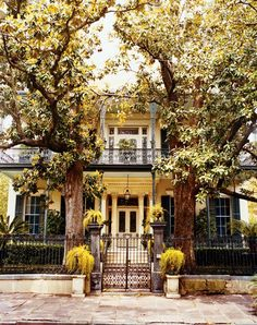 New Orleans - the Garden District