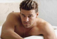 David Boreanz aka. Angel / Special Agent Seeley Booth (Bones)