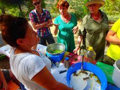 Kochkurs-kreta-griechenland Workshop, Cotton Candy, Kitchen Appliances, Crete Greece, Greek Dishes, New Recipes, Meal, Easy Meals, Diy Kitchen Appliances