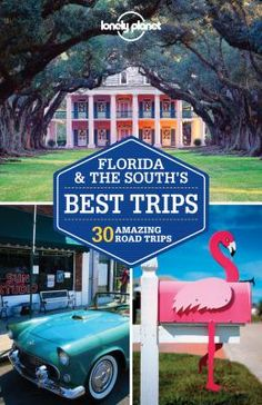 """Florida & the South's best trips : ... amazing road trips"" by Lonely Planet, available at the Carol Stream Public Library."