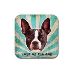 Hair of the DOG coasters set of 4  Boston Terrier by KirianGallery