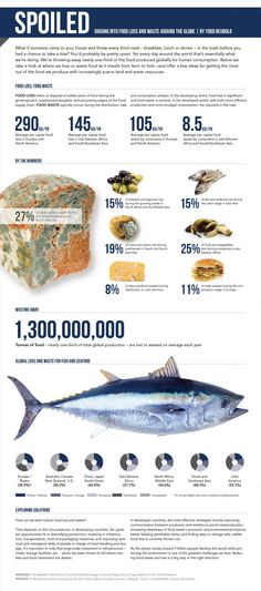 Infographic showing food loss and food waste around the world