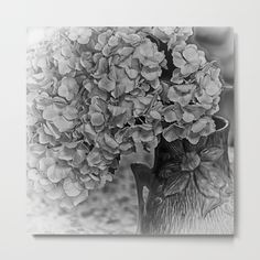 Textual floral macro photo of a white hydrangea in a vase.