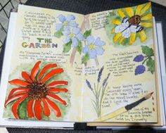 Sketchbookery....  Sharon C