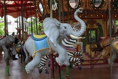 Endangered Species Carousel - New Orleans Zoo| Flickr ...