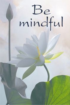 Every moment of every day is a chance to practice Mindfulness & Gratitude- Namaste ~