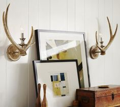 I'm going to use antlers somewhere in the house. I just love them. Maybe in the master bath?