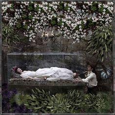 Snow-white-glass-coffin