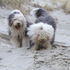 moving sand...ft Rhea & Lisa - #RheaenLisa