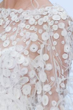 Fall 2009 Couture  Elie Saab