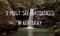 Kentucky has literally hundreds of waterfalls, but these are 5 of the best in the entire state! You'll definitely want to not miss these.
