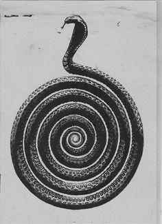 The Snake. #occult #illustration