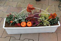 Výsledek obrázku pro podzimní truhlíky Decoration, Plants, Halloween, Home Decor, Fall Season, Autumn, Balcony, Projects, Decor