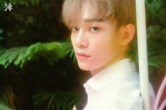 Kim Jongdae (Chen) | EXO