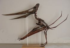 pterodactyl skull - Google Search