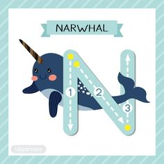 N is for Narwhal = Narwal