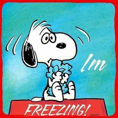 Jan. 2, 2018  Time: 10:00am,Temp. 17F  Place: N. E. Georgia Yes, I'm freezing.