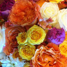 Jocelyn's Flowers