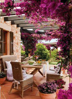 Comedor de exterior bajo pérgola cubierta de una buganvilla en flor_ 00346776