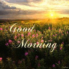 Good Morning Wishes Gif, Good Morning Rainy Day, Good Morning Monday Images, Happy Weekend Images, Good Morning Beautiful Pictures, Good Morning Nature, Happy Sunday Quotes, Good Morning Inspiration, Good Morning Photos