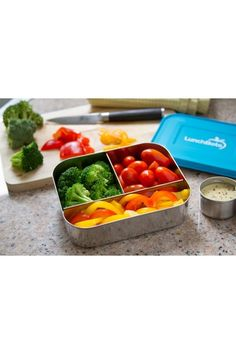 Trio Stainless Steel Divided Food Container