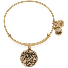Alex and Ani Tree of Life Iii Expandable Wire Bangle ($28) ❤ liked on Polyvore featuring jewelry, bracelets, rafaelian gold, wire bangle bracelet, bangle bracelet, wire bangles, hinged bracelet and bracelets & bangles