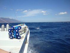 Na Pali coast, Kauai, Hawaii Kauai Hawaii, Places Ive Been, Beautiful Places, Coast, Travel, Voyage, Viajes, Traveling, Trips
