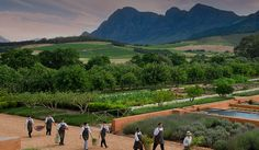 Franschhoek Food and Wine Tour Cape Town - Explore Sideways South Africa Honeymoon, Safari, Stuff To Do, Things To Do, Wine Tourism, Le Cap, Wanderlust Travel, Cape Town, Great Places