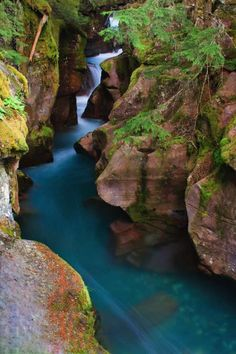Intense blue glacial melt water rushing through the narrow canyon of Avalanche Gorge, Glacier National Park 2
