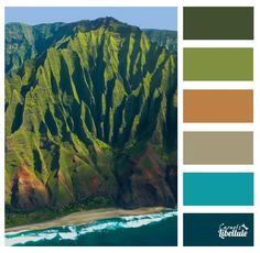 Hawaii paint palette.