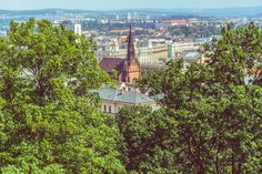The Red Church through the trees of Špilberk Castle's demesne in Brno, Czech Republic – Ben Finch Amazing Buildings, Czech Republic, Wander, Paris Skyline, Castle, Trees, Tree Structure, Wood, Bohemia
