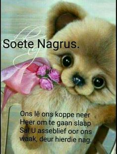 Good Night Messages, Good Night Quotes, Good Night Image, Good Morning Good Night, Good Knight, Afrikaanse Quotes, Goeie Nag, Morning Pictures, Morning Pics