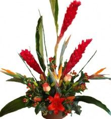 Flower delivery in Joshua by Joshua florist — Fresh flowers included: Red Ginger, Birds of Paradise, Red Hypericum, Lilies and Roses. Approx...
