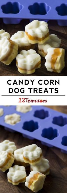 Home Made Dog Food Ideas Candy corn dog treats! Don't leave anyone out this Halloween! Don't leave anyone out this Halloween! Puppy Treats, Diy Dog Treats, Homemade Dog Treats, Dog Treat Recipes, Healthy Dog Treats, Dog Food Recipes, Pumpkin Dog Treats, Food Tips, Healthy Foods