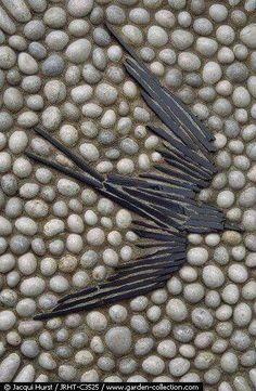 Gradinapebble mosaic path - : More Pins At FOSTERGINGER @ Pinterest