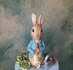 Learn how to create a Peter Rabbit figurine out of modeling chocolate with this tutorial; perfect for a Peter Rabbit themed cake. Peter Rabbit Figurines, Peter Rabbit Cake, Beattys Chocolate Cake, Modeling Chocolate, Fondant Figures Tutorial, Cake Tutorial, Fondant Flower Cake, Fondant Bow, Marshmallow Fondant