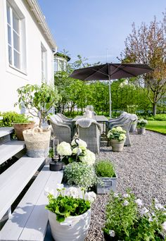 Gravel patio behind house with lovely white flowers and greenery. SOMMAR MED JYSK – House of Philia Pea Gravel Patio, Backyard Patio, Backyard Landscaping, Concrete Backyard, Landscaping Ideas, Backyard Ideas, Outdoor Rooms, Outdoor Gardens, Garden Sitting Areas