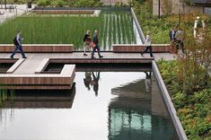 Bill and Melinda Gates Foundation - Seattle Campus; Landscape architect: Gustafson Guthrie Nichol; The foundation's site is anchored by a reflective pond. Rainwater collection and reuse strategies, along with efficient plumbing fixtures, completely eliminates all polluted rainwater runoff and reduces the building's potable water use by 79 percent compared to the Energy Policy Act of 1992.